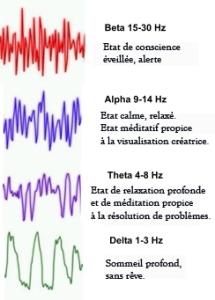 Ondes cérébrales et états de conscience