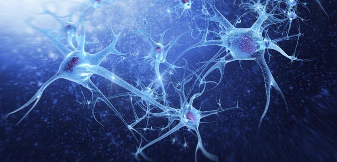 Réseaux neuronaux